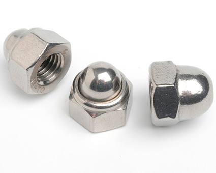 Stainless Steel Nylon Insert Domed Nuts