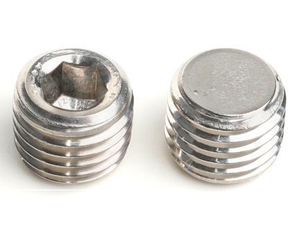 Stainless Steel Socket Pipe Plugs
