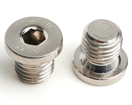 Stainless Steel Socket Pipe Plugs with Collar